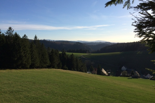 Holzdisplay aus dem Schwarzwald mit Traditon